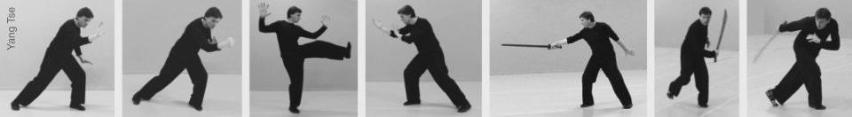 taichi yang - Le Tai Chi Chuan de la Boxe du Serpent (appelé aussi style du Serpent) est l'héritage de Ip Tai Tak. Selon ses propos, Yang Chen Fu a transmis la véritable pratique de la famille Yang uniquement à son fils ainé Yang Sau Chung qui l'a transmis exclusivement à Ip Tai Tak. Tous les autres élèves ont seulement reçu l'enseignement du Style du Tigre, une pratique simplifiée et limitée, créée par Yang Cheng Fu à partir de son style familial appelé style du Serpent. Désormais accessible en France, le Tai Chi Chuan de la Boxe du Serpent (ou Style du Serpent) a été amené en France pour la première fois, en 2008, par James Piotr Blaise qui a créé l'école Yang Tse, formé les premiers enseignants en France et, de fait, a initié un nouveau mouvement dans le Tai Chi Chuan.
