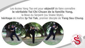 tai chi yang tse - Les écoles Yang Tse enseignent la véritable pratique du Tai Chi Chuan de la famille Yang : la Boxe du Serpent (ou Snake Style) et respectent scrupuleusement les principes fondamentaux du Tai Chi Chuan.