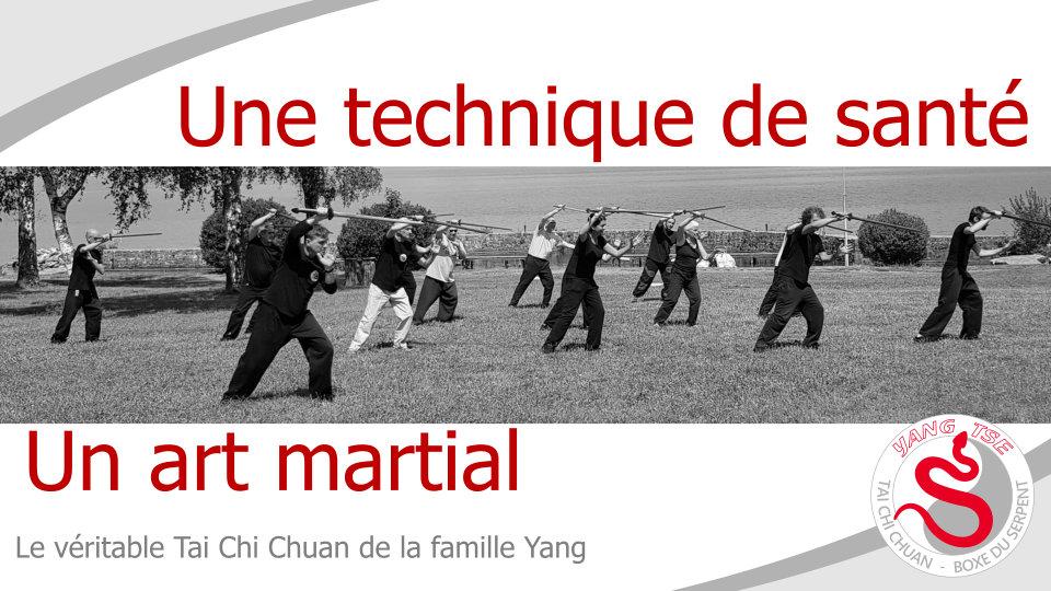tai chi yang - Durant les 30 années avec Yang Sau Chung, Ip Tai Tak a acquis une immense compétence. Il est réellement devenu un maître de Tai Chi Chuan. Le Tai Chi Chuan de la Boxe du Serpent (appelé aussi style du Serpent) est son héritage avec son savoir. Le Tai Chi Chuan est un art martial. Son apprentissage commence par la lenteur pour intégrer les principes corporels qui le régissent et les gestes martiaux qui composent les enchaînements (coups de poings, blocages, esquives, coups de pieds, coups d'épaules…). Plus tard, des enchainements avec armes (sabre, épée, bâton) viennent enrichir la pratique. Toutes ces pratiques sont dynamiques et rapides, comme l'exige la réalité martiale.